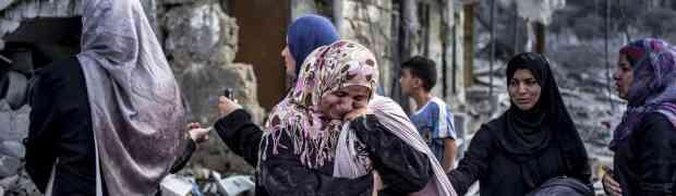 Faixa de Gaza: 19 fotos tiradas durante dia de trégua