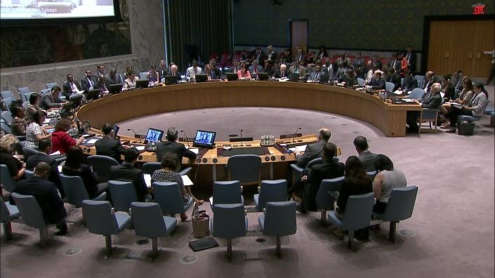 Conselho de Segurança da ONU. Foto: TV ONU/reprodução